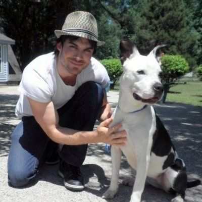 11 Celebrities Who Love and Advocate for Animals ...