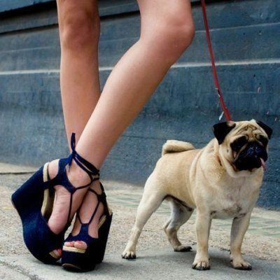 7 Tips for Choosing Fashion That's Cruelty-Free ...
