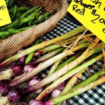 7 Easy Tips for Making the Most of Your Summer Produce ...