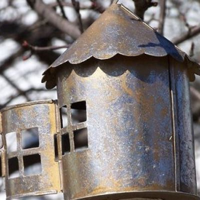 5 Tips on Making Your Own Bird Feeder ...