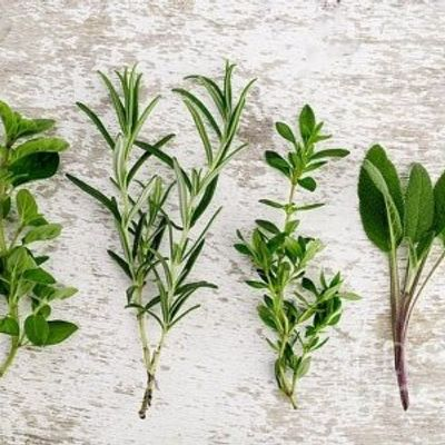 7 Herbs That Stimulate Digestion and Enhance Your Health ...