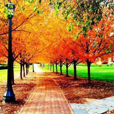 7 Facts about the First Day of Fall ...