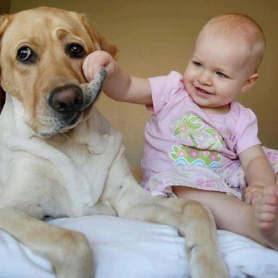 You Won't Believe How Cute These Babies and Pets Are Together!