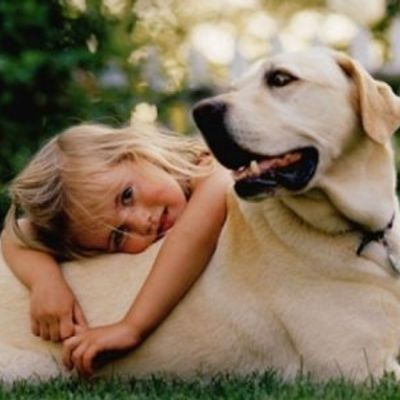 9 Tips for Introducing Your Pet and Your Child ...