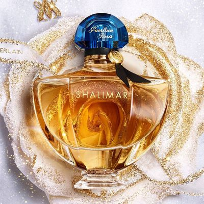 Gorgeous Perfumes  That Your Favorite Celebs  Love to Wear  ...