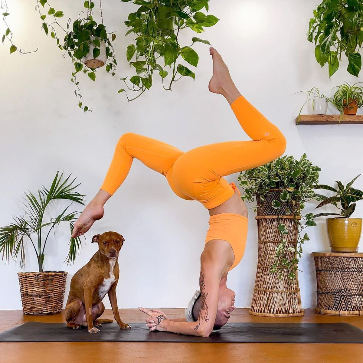 6 Yoga Poses  to Relieve Stress  and Tension  ...