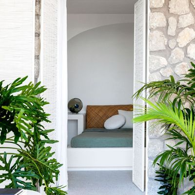 7 Plants for a Very Sunny Balcony ...