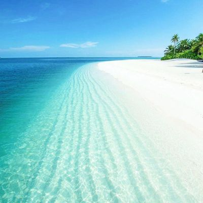 7 of the Worlds Best Eco-Friendly Beaches ...
