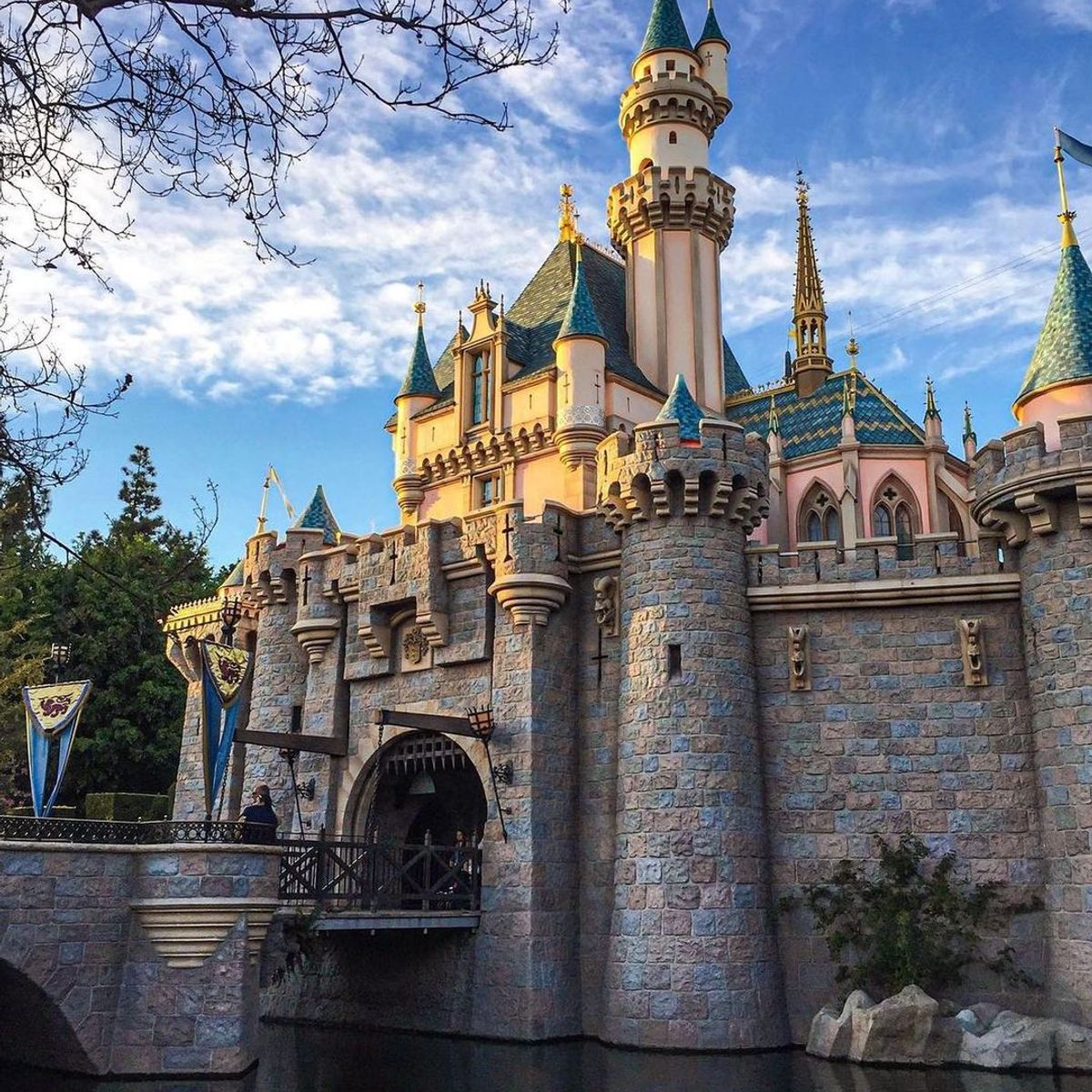 35 Great  Tips and Secrets  for a Fantastic  Trip to Disneyland  ...