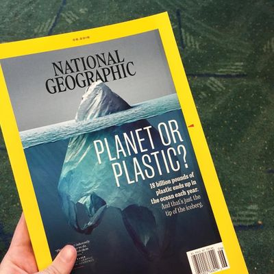 14 Facts 📖 about the Impact of Plastic 😱 on the Environment 🌿 That Will Change 🔄 Your Attitude 😬 ...