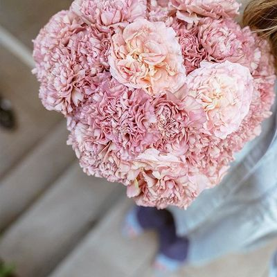 34 of Today's beyond Gorgeous 👍🏼 Flowers Inspo for Girls 🙋🏿🙋🏼🙋🏽🙋🏻 Looking to Add Something to Their Home 🏡 ...