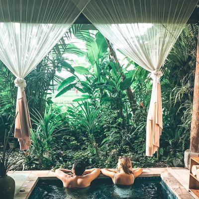 5 Reasons to Have a Backyard Garden ...