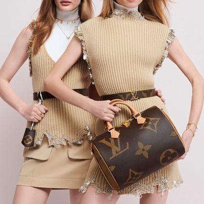 6 Reasons to Buy a Louis Vuitton Speedy Bag ...