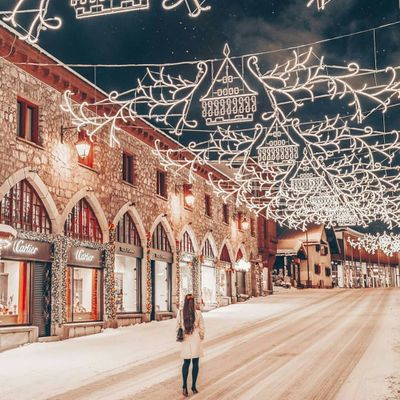 The Best Christmas Lights ✨in Every State 🇺🇸 ...