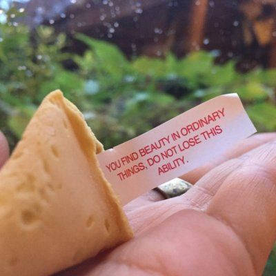 7 Motivational Fortune Cookies That'll Help You Succeed ...