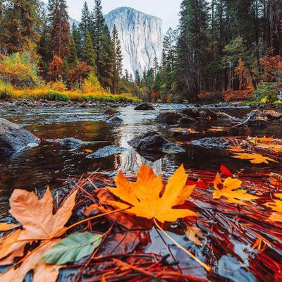8 Great  Places to See  Autumn  Leaves ...