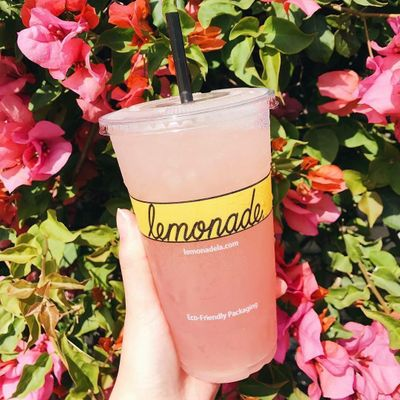 Refreshing 😊 Lemonade 🍋 Recipes Perfect 👌 for Your 4th of July 📆 Party 🎉 ...