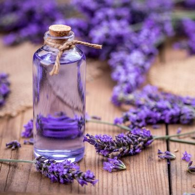 10 Best Essential Oil Brands You Should Definitely Know about ...