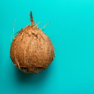 7 Things to do with Coconut That Are Simple Enough for Anyone to do ...