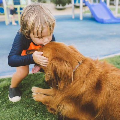 4 Cool 😎 Benefits to Giving Your Child 👨👩👧👦 a Pet 🐶🐱🐰 ...