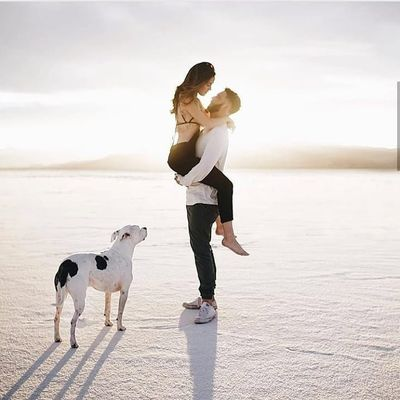 7 Dog-Friendly Date Ideas That You Will Love ...