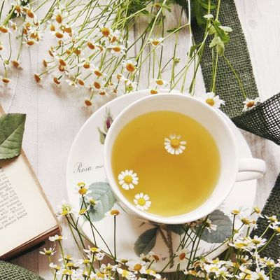 Sleep 😴 Inducing Drinks 🍵 for Insomnia Sufferers 🌜 ...