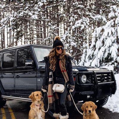 Oscar Fashions... for Your Dog?!