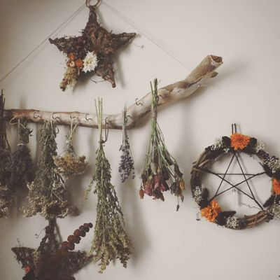 Celebrating 🎉 Samhain 📆 ...