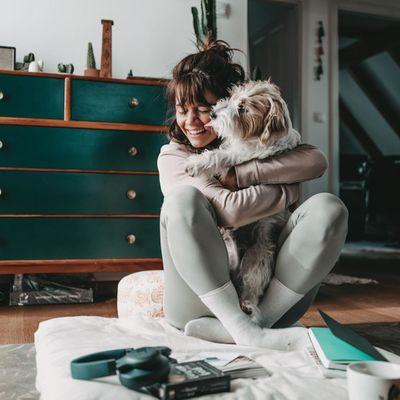 7 Recipes for Home-Made Dog Treats ...