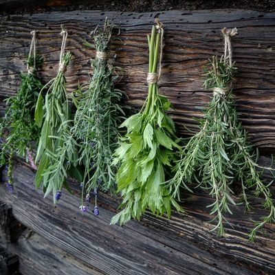 Wonderful Herbs to Eat That Combat Acne ...