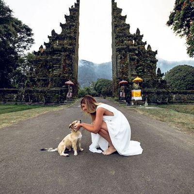 7 Secret Languages Your Pets Have ...