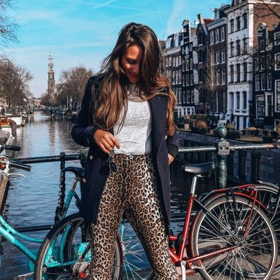 5 Great Things to do in Amsterdam ...