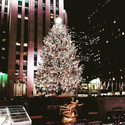 9 Snippets about the Rockefeller Center Christmas Tree through the Ages ...