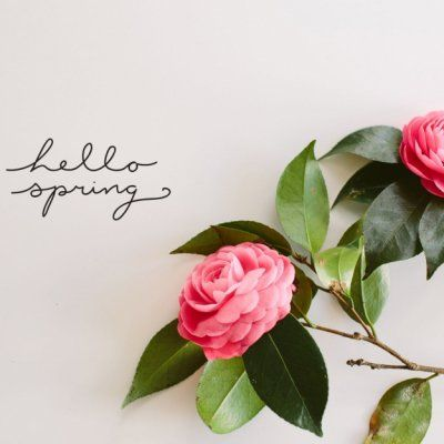7 Things to Look Forward to This Spring ...
