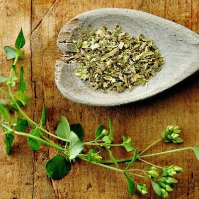 7 Herbs That Boost Your Weight Loss Efforts ...