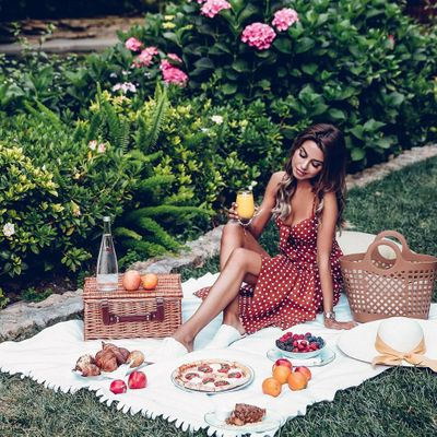 8 Great Picnic Basket Ideas for a Great Day out ...