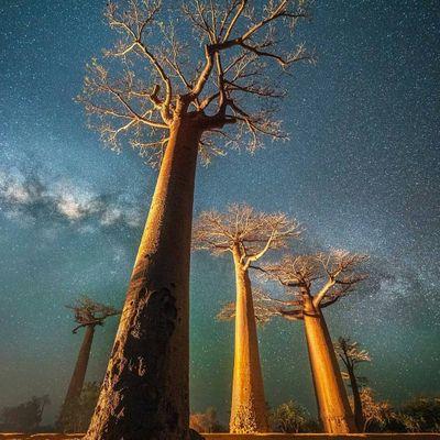 7 Natural Wonders of Madagascar ...