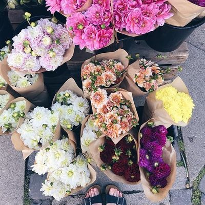 34 of Todays Magical  Flowers Inspo for Girls Who Love  Having Flowers  around ...