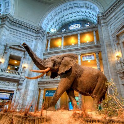 Are These the Best Museums in the USA? Trip Advisor Members Think so ...