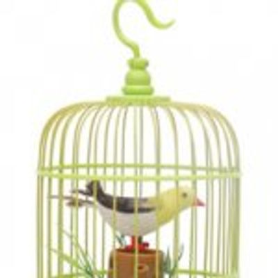 Bird on a Wire, in a Cage, It's All the Same